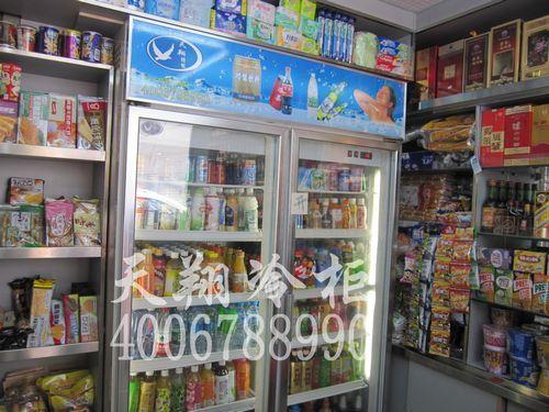 双门冰柜,冷藏展示柜,冷柜报价