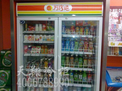 二门冰柜,立式冷柜,保鲜冷柜
