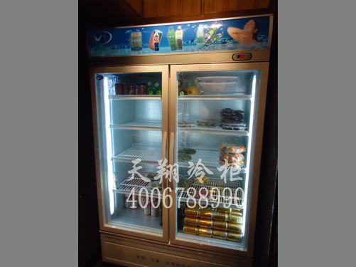 两门冷柜,立式冰柜,冰柜厂家