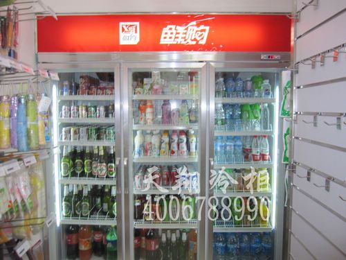 三门冰柜,保鲜展示柜,冰柜冷冻柜