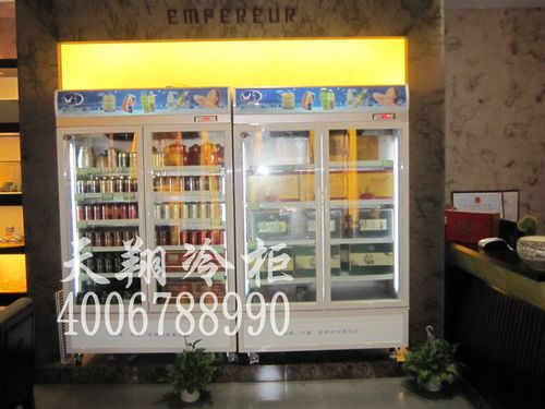 两门冷藏柜,茶叶冰柜,保鲜陈列柜