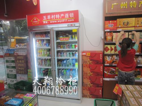 广州冰柜,两门冰柜,饮料冷藏柜,立式冰柜价格
