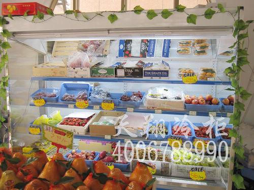 保鲜柜价格,东莞保鲜柜,保鲜冷柜,水果冰柜