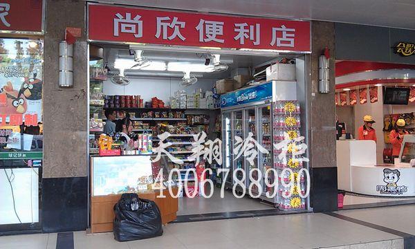 冷柜价格,四门冷柜,冰柜尺寸,广州雪柜