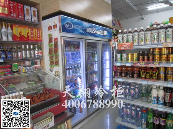 大型冰柜,便利店冰柜,三门冰柜