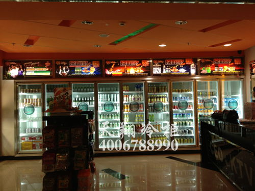 KTV大冰柜,啤酒冷冻柜,饮料展示柜
