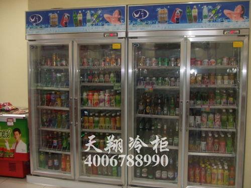 二门冰柜,冰柜报价,云南冰柜