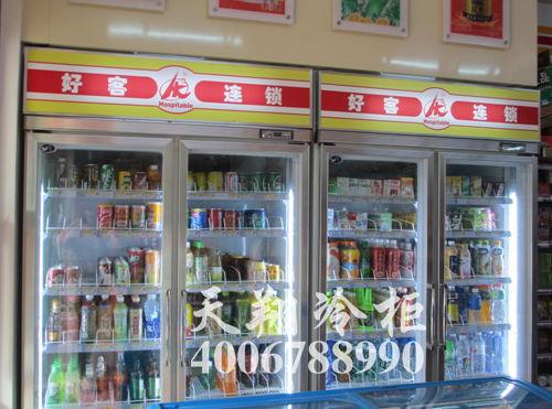 二门冰柜,惠州冷柜,冷柜价格