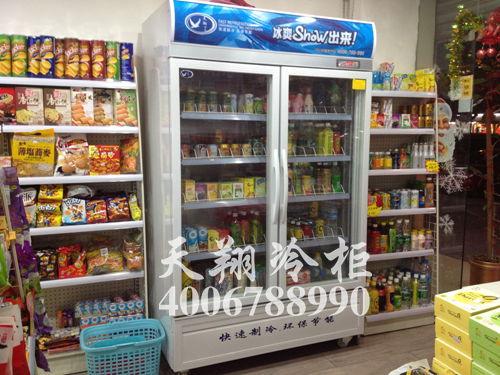 两门冰柜,立式冰柜,冰柜厂家