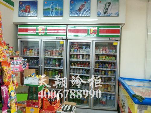 两门冷柜,立式冰柜,东莞冰柜