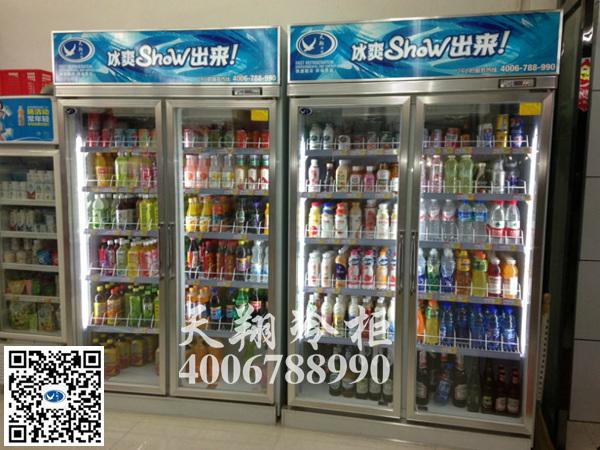 双开门冰柜,两门展示柜,便利店冰柜