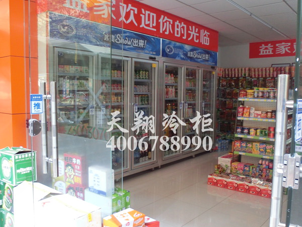 三门冷藏柜,大型冰柜,冰柜报价