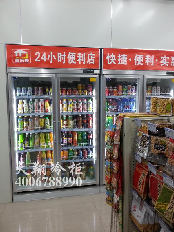 双开门冰柜,便利店冷柜,重庆冰柜