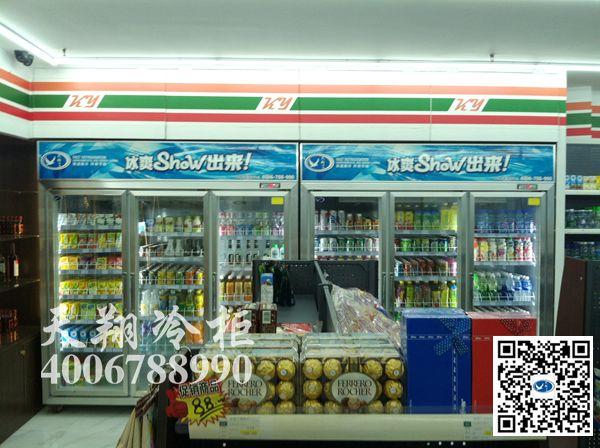 三门冰柜,2100冰柜,便利店冰柜