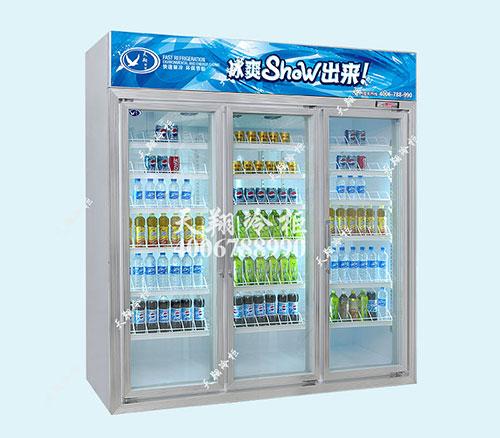 冰柜,冰柜厂家,便利店冰柜,天翔冷柜