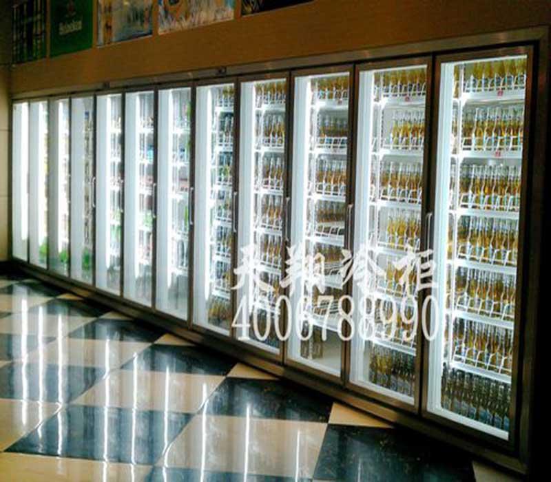 惠州饮料冰柜,KTV啤酒展示冷柜,冷冻柜价格,惠州冰柜