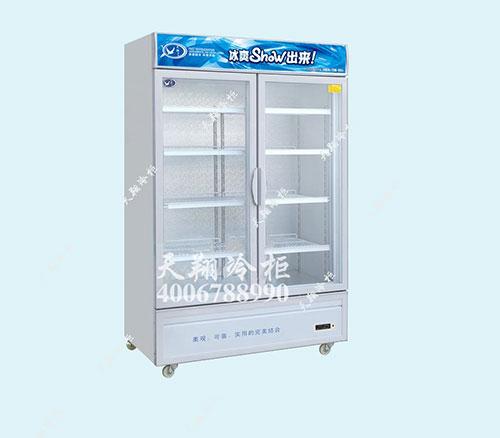 冰柜,便利店冰柜,鸭脖柜,冷柜厂家
