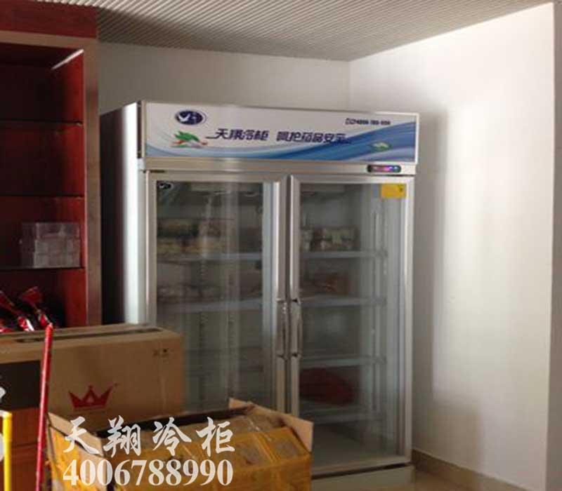 药品阴凉柜,药品冷藏柜,医用冷柜,医药冰柜