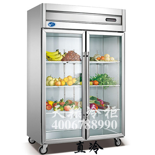 冰柜,冰柜冷藏,冰柜价格
