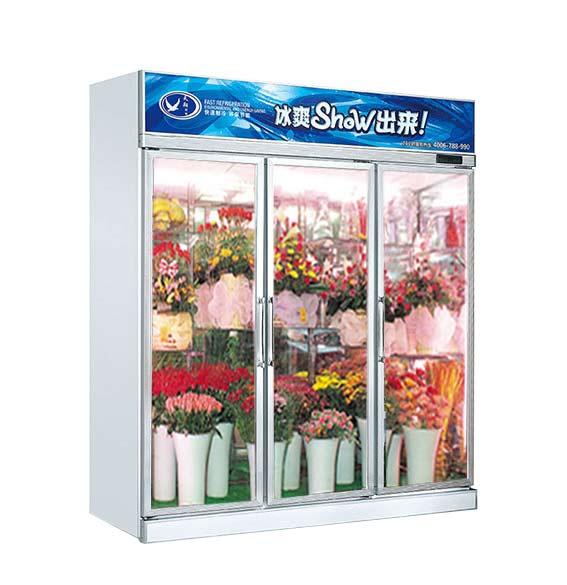 鲜花冷柜,冷柜,冷藏柜,冷柜厂家