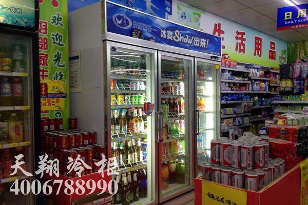 三门冰柜,便利店冷柜,饮料柜,保鲜柜